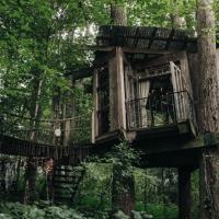 Awsome tree house