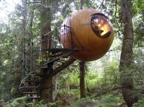 Tree-House-4
