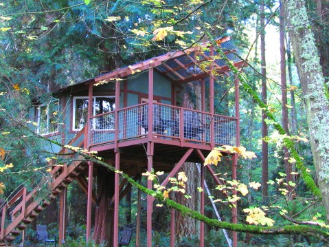 Tree-House-Front-Cropped-Website