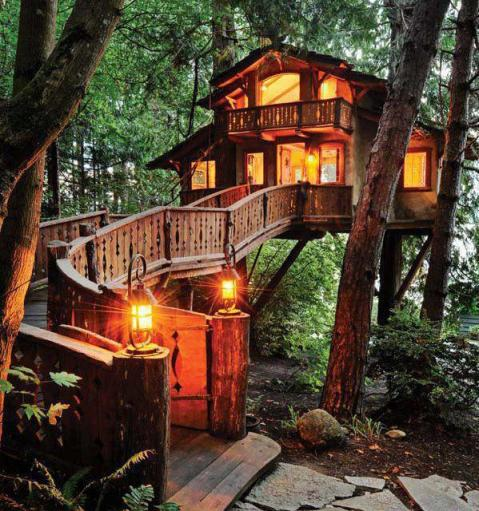 Wonderful Tree house..!!! Would you like to stay..