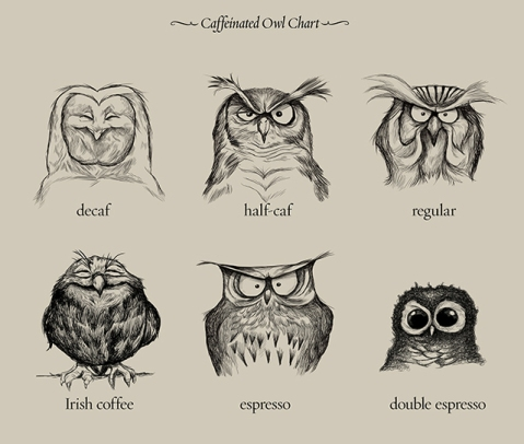 20130704-10515325-caffeinatedowls